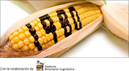 Qué proponen los nuevos proyectos de ley sobre Trabajo Agrario