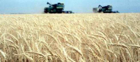 Seguros contra sequía: ¿de quién es la responsabilidad?