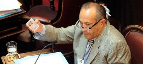 """Adolfo Rodríguez Saá: """"Nadie habla del voto de los extranjeros (…) que son millones"""""""