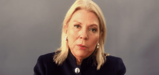 Spot Carrio web