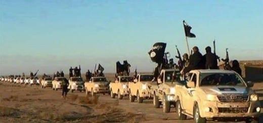 Isis combatientes