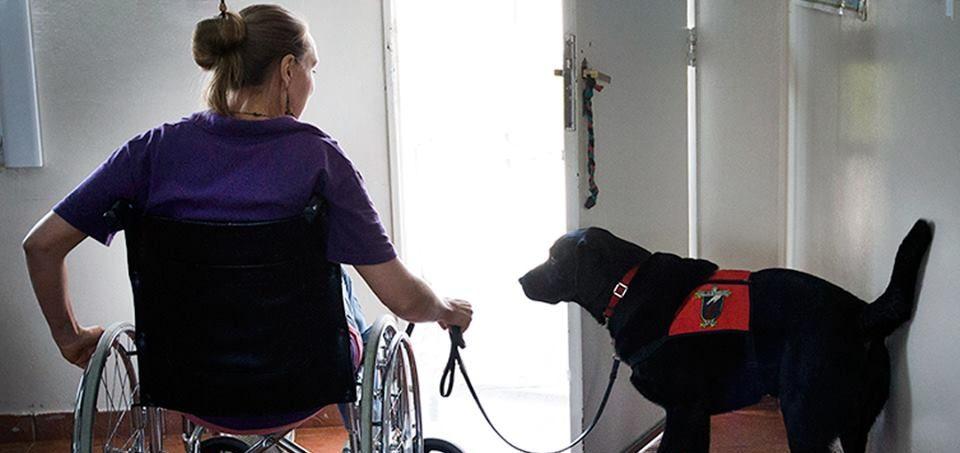 """Clarín: """"El Gobierno empezó a dar de baja pensiones por discapacidad"""""""