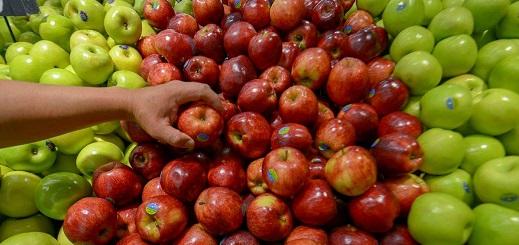 Donación de alimentos: qué dice el proyecto que se discute en el Congreso
