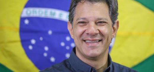 """Es falso que la OEA mantuvo una """"reunión secreta"""" con Fernando Haddad"""