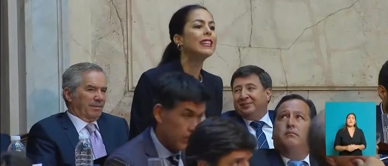 Quién es la mujer que irrumpió a los gritos durante el discurso del Presidente en el Congreso