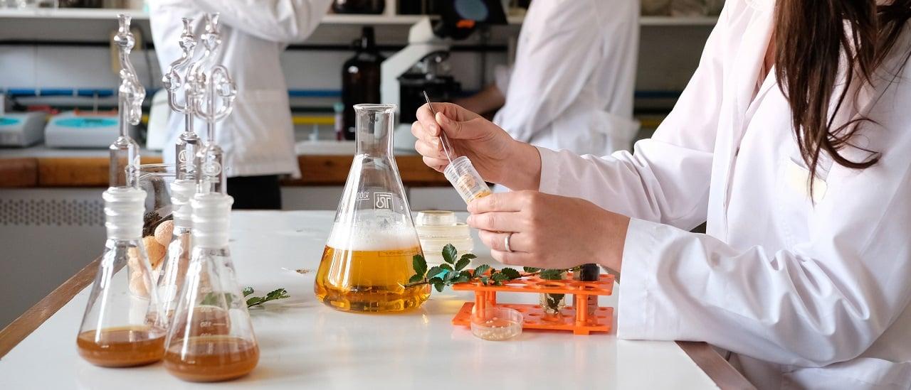Cuánto bajó la inversión en Ciencia en la gestión de Cambiemos