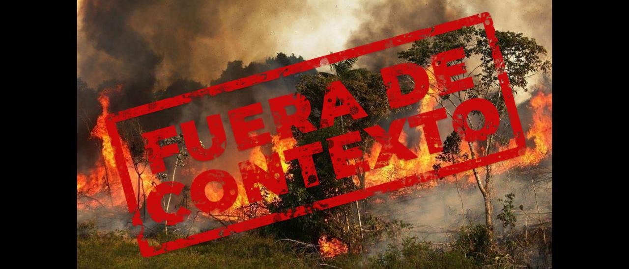 Incendio en el Amazonas: circulan fotos que no son actuales y algunas ni siquiera son de Brasil