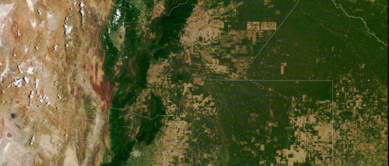 La deforestación del Gran Chaco continuó durante el aislamiento