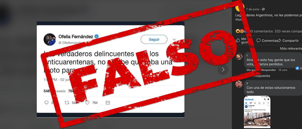 """Es falso que Ofelia Fernández dijo que """"los verdaderos delincuentes son los anticuarentena, no el pibe que roba una moto para comer"""""""