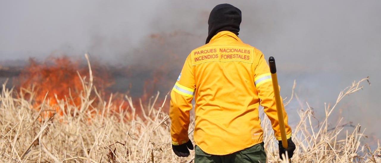Más de la mitad de las provincias sufren incendios forestales y el 95% fueron causados por el hombre