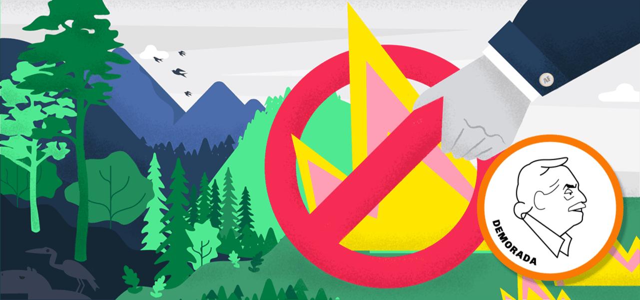 """Alberto Fernández: """"Vamos a cuidar nuestros bosques"""""""