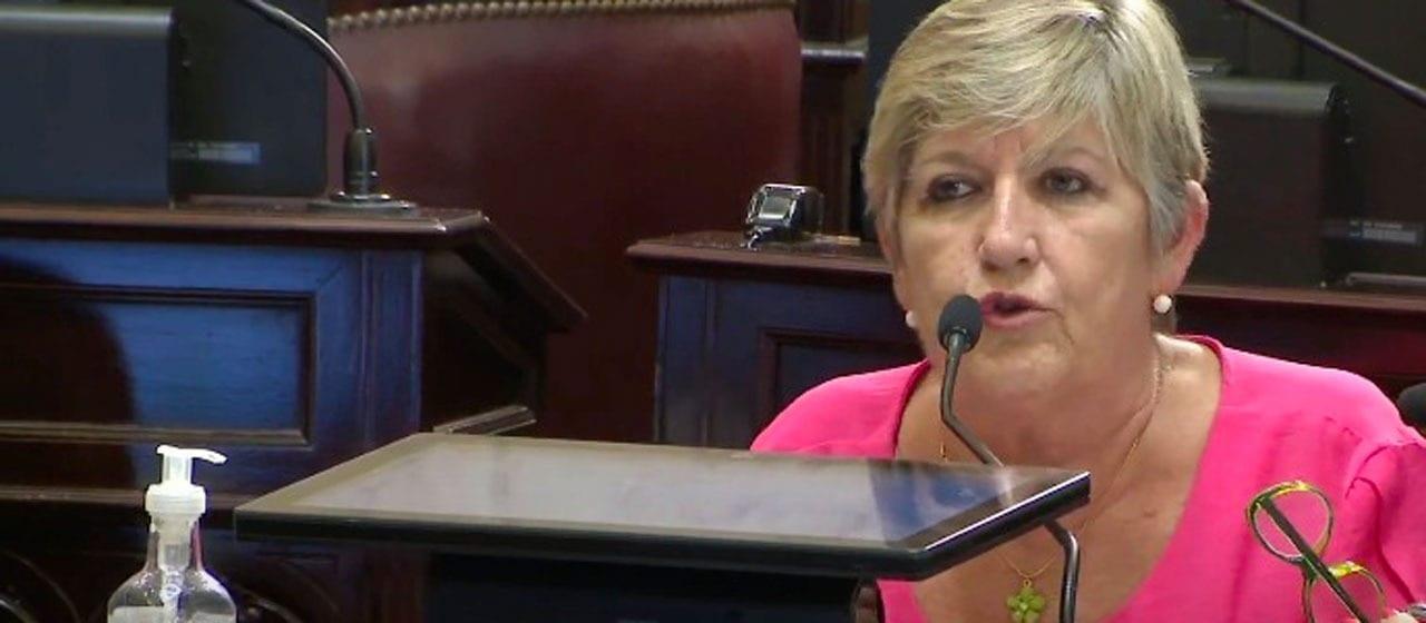 """Nancy González: """"Es mucho más económico para el Estado aprobar este proyecto hoy, a que sigan habiendo abortos clandestinos"""""""