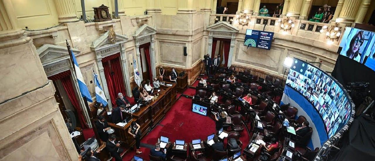 Legalización del aborto: cómo voto el Senado