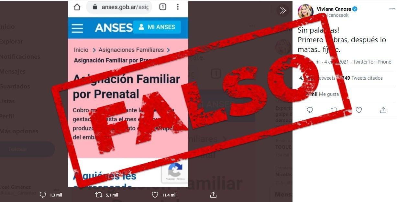 Es falso que el Gobierno nacional otorga un beneficio por embarazo hasta el momento del aborto