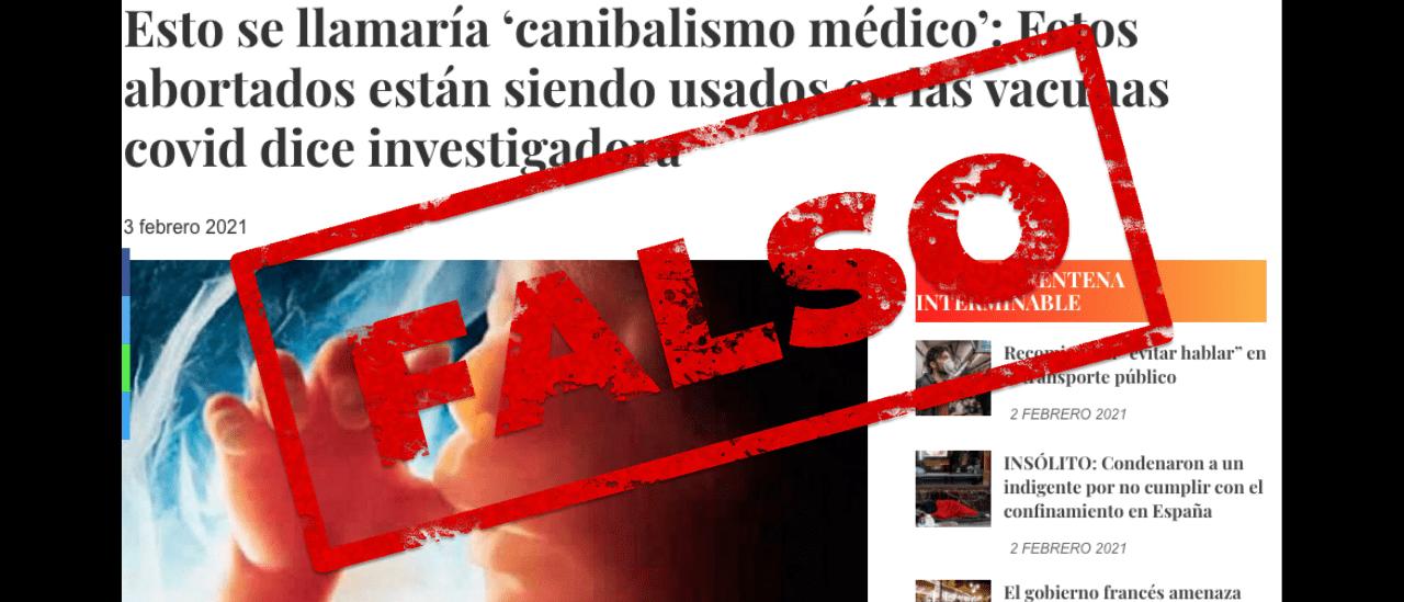 Es falso que están usando fetos abortados en las vacunas contra el coronavirus