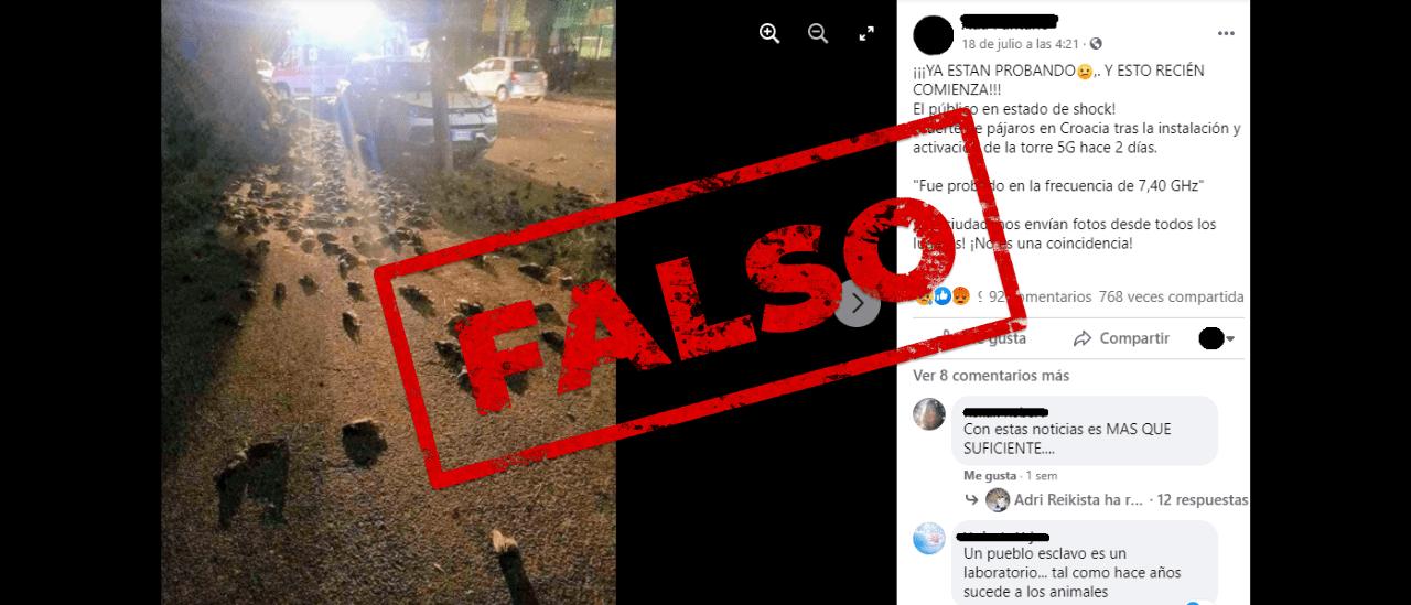 Es falsa la foto que muestra la muerte de pájaros en Croacia por el 5G